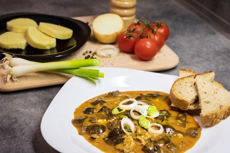 Czech traditional food - mushroom goulash served with bread, potato dumpling and onion