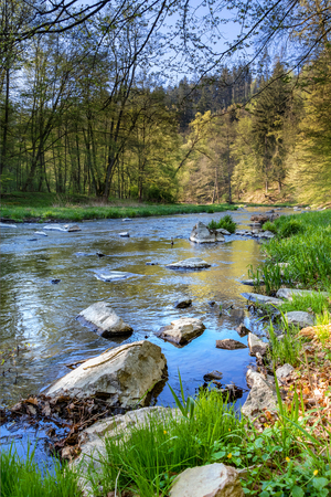 Beautiful scenery of spring landscape with river and forest. Oslava river, Czech Republic, Europe