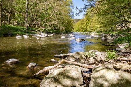 River with stones under blue sky in spring landscape. Oslava river, Czech Republic, Europe