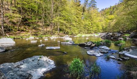 Stony river in spring forest under blue sky. Oslava river, Czech Republic, Europe