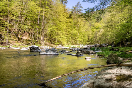Spring landscape with river and forest under blue sky. Oslava river, Czech Republic, Europe