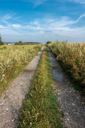 Summer landscape with dirt road under blue sky with clouds - Czech Republic, Europe