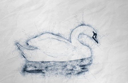 Illustration of swan on water in hand drawn style on crumpled paper