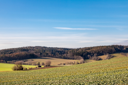 Beautiful autumn or spring countryside with fields and forest under blue sky - Czech Republic, Europe