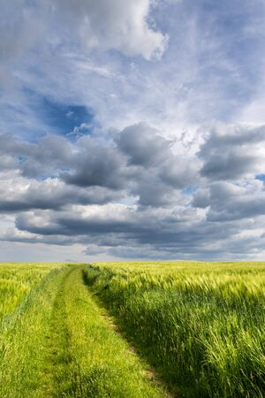 Amazing cloudy sky and dirt road between green fields - spring or summer landscape from Czech Republic, Europe Reklamní fotografie