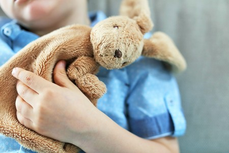 plush toy: A rabbit plush toy in the arm of a young toddler