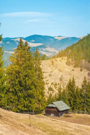 arboleda: Landscape from the rocky Fagaras mountains in Romania in the summer with Capra lake in the distance Foto de archivo