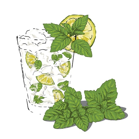 Glass of mojito garnished with fresh mint and lime Vector