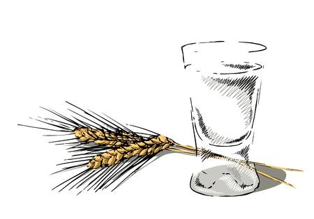 Bicchiere di vodka con spighe di segale Archivio Fotografico - 20880466