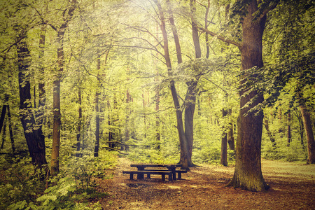 Peaceful nature vintage background  Stock Photo