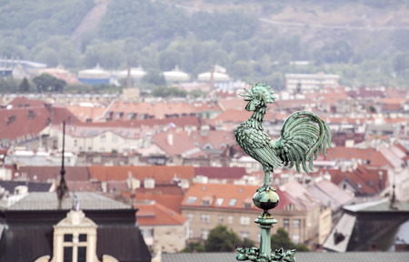 Rooster overlooking Prague roofs photo