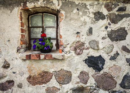 deteriorated: Flowers on the window of ancient building stone wall