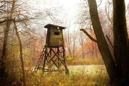 Hunting pulpit in forest at sunrise, Poland. Reklamní fotografie