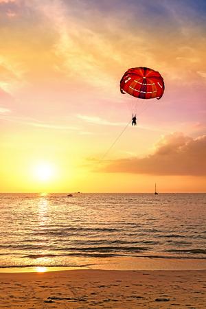 paraglider: Summer postcard, paraglider over beach at sunset.