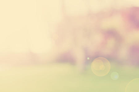 sunny: Blurred retro nature background with flare effect, space for text.