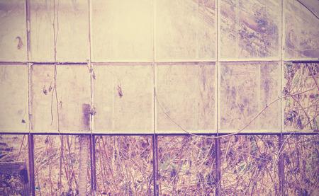 glasshouse: Vintage filtered grungy background, old abandoned glasshouse.