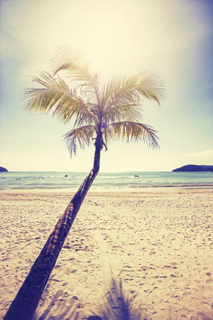 tropical island: Vintage stylized tropical beach with palm tree at sunset.
