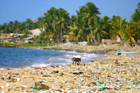 관광객, 환경 오염 개념 그림 왼쪽 해변에 쓰레기.