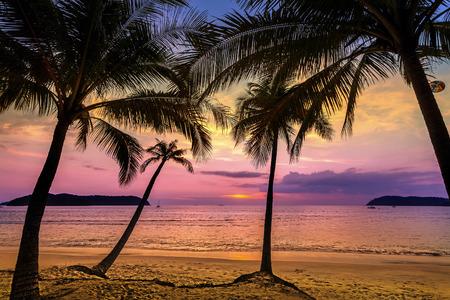 playas tropicales: Puesta del sol p�rpura sobre la playa, vacaciones de verano de fondo.