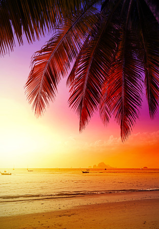 Beautiful sunset over beach, summer holidays background.