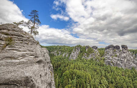 saxon: Rocks in Bastei, Saxon Switzerland, Germany.