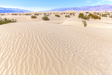 death valley: Sand dunes in Death Valley National Park, Stovepipe Wells, California, USA. Stock Photo