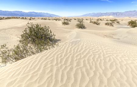 fallecimiento: Dunas de arena en el Parque Nacional Death Valley, Stovepipe Wells, California, EE.UU..