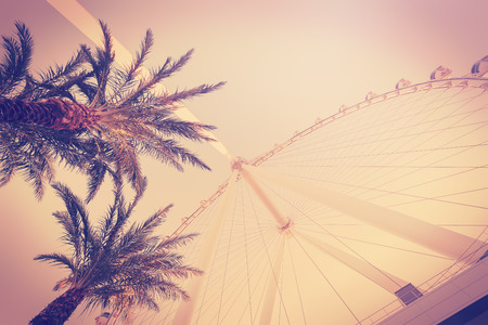 filters: Retro vintage toned photo of palms and ferris wheel, summer fun concept.