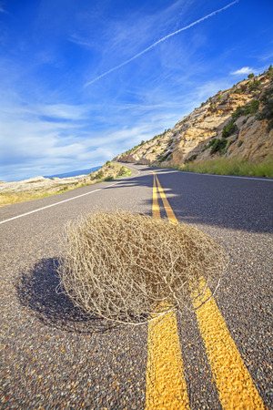 Tumbleweed on an empty road, travel concept picture, shallow depth of field, USA.