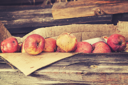 rancid: Vintage toned rotten apples in carton on wooden boards.