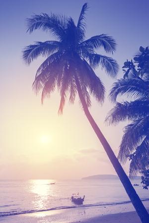 playas tropicales: Vintage entonado playa tropical al atardecer. Foto de archivo