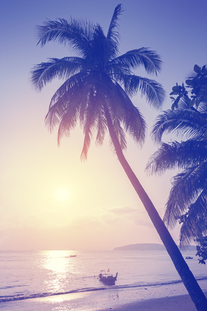 tropical fruits: Vintage toned tropical beach at sunset. Stock Photo