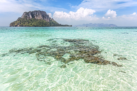 shallow water: Shallow water by a tropical island, summer holidays background.