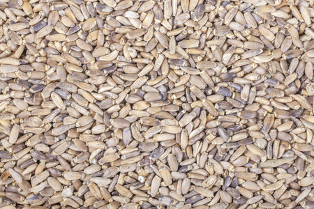 close up food: Close up picture of milk thistle seeds, food background.