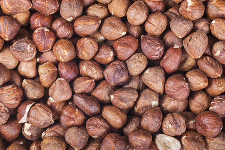 close up: Close up picture of hazelnuts.