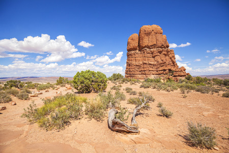 Wilderness and rock formations in Arches National Park, USA. Stock Photo