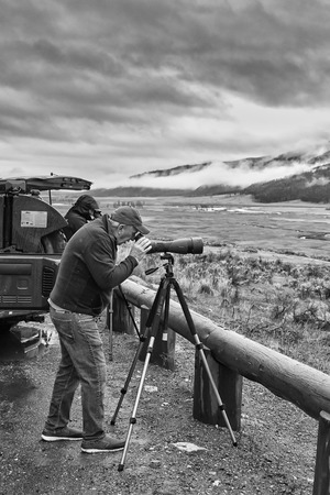 the watcher: Yellowstone National Park, Wyoming, USA - October 29, 2016: Wildlife watcher observing a herd of wolves on a cold rainy day.