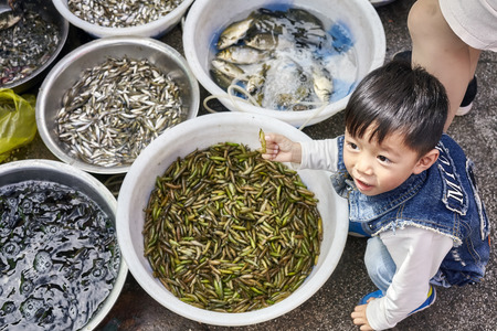 local 27: Lijiang, Yunnan, China - September 27, 2017: Child plays with edible insects on a local market. Editorial