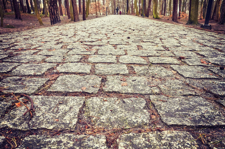 Cobblestone path in a park, close up color toned picture, shallow depth of field. 스톡 콘텐츠