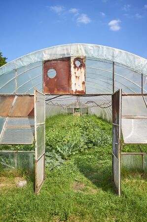 Front view of an old greenhouse on a sunny day.