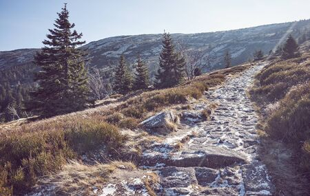 Mountain path in the frosty morning in Karkonosze National Park, color toning applied, Poland.
