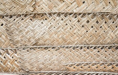 Palm leaf wall, natural background or texture. Stock Photo