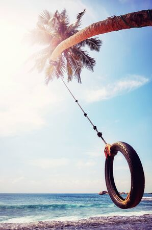 Palm tree with tire swing against the sun, summer holiday concept, color toning applied. Stock Photo
