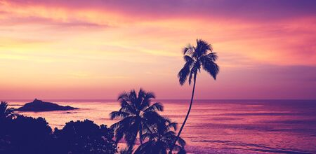 Tropical beach with palm tree silhouettes at sunrise, color toning applied, Sri Lanka. Stock Photo