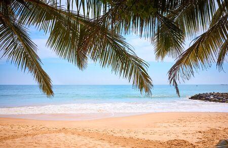 Tropical beach, summer vacation concept, Sri Lanka.