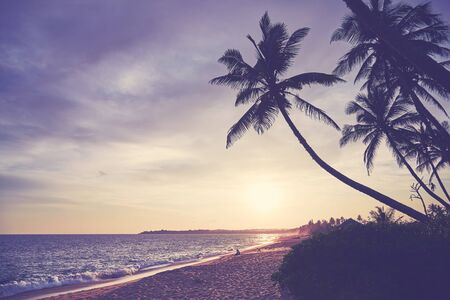 Tropical beach at sunset, color toning applied, Sri Lanka.