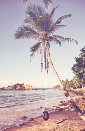 Coconut palm tree with tire swing on a tropical beach, summer holiday concept, color toning applied.