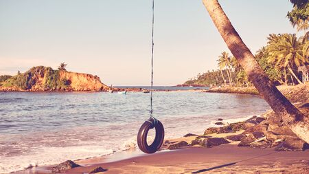Palm tree with tire swing on a tropical beach, summer holiday concept, color toning applied. Stock Photo
