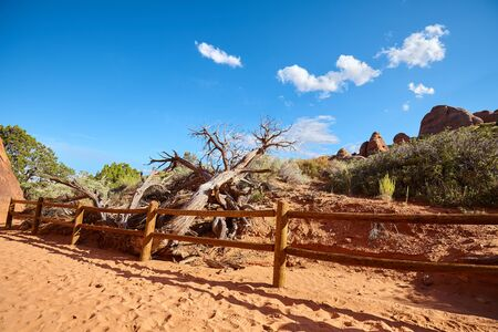 Hiking trail in the Arches National Park, Utah, USA.
