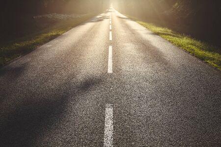 Wet asphalt road in forest against the sun. Stock fotó